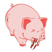 pig bacon