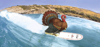 surfing turkey