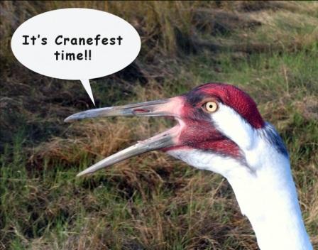 cranefestfinal