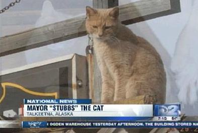 mayor-stubbs